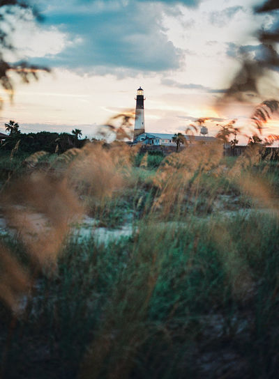 peering through the grass a lighthouse with a dark sunset over it. Georgia Architecture Building Exterior Built Structure Cloud - Sky Day Direction Grass Landscape Lighthouse Nature No People Outdoors Sky Sunset Tower