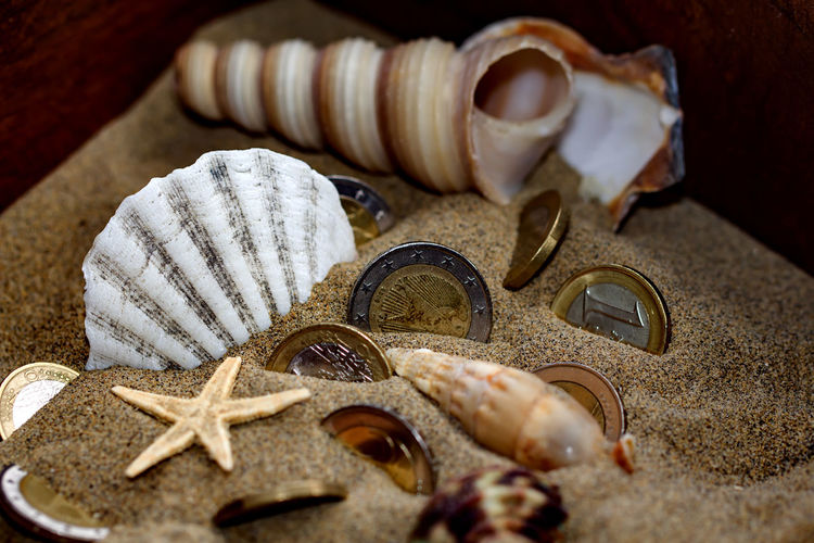 Close-up Of Shells And Coins On Table