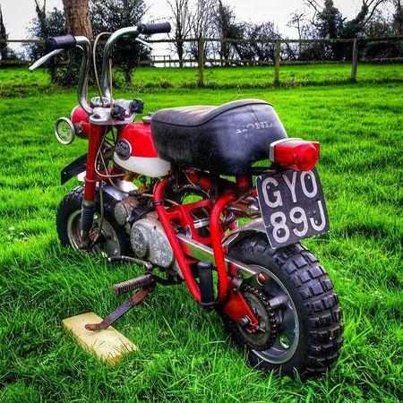 Hondaz50 Monkeybike Hondamonkey Honda Z50A Z50 Minitrail
