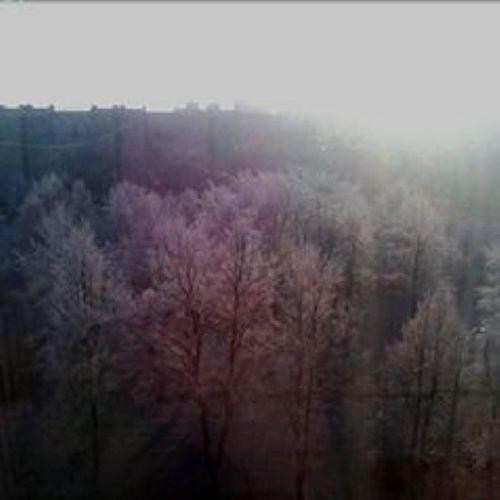 Frosts in St. Petersburg