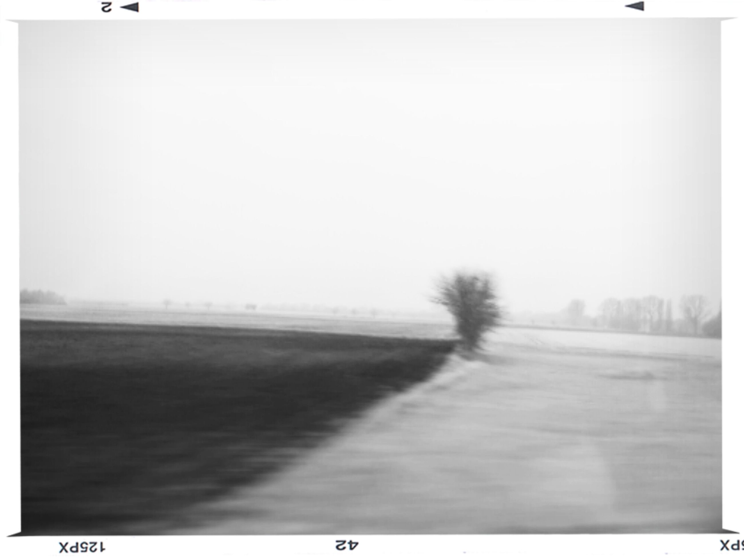 copy space, transfer print, clear sky, the way forward, tranquility, tranquil scene, auto post production filter, foggy, nature, scenics, landscape, road, weather, field, empty, beauty in nature, diminishing perspective, solitude, outdoors