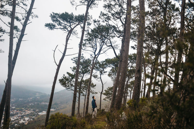 Among the trees. Adventure Beautiful Beauty In Nature Cape Town Chance Encounters Check This Out Enjoy The New Normal Explore Flowers Fog Forest Hello World Jonnynichayes Landscape Love Man Man In The Trees Mountain Nature Outdoors Popular Photos Signal Hill Sky South Africa Tree