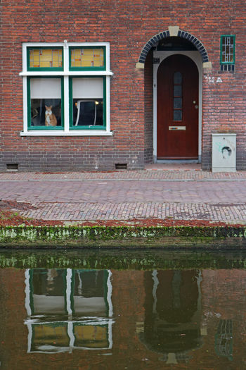 Architecture Brick Wall Building Exterior Built Structure Cat Day Door No People Outdoors Reflection Watermirror Window