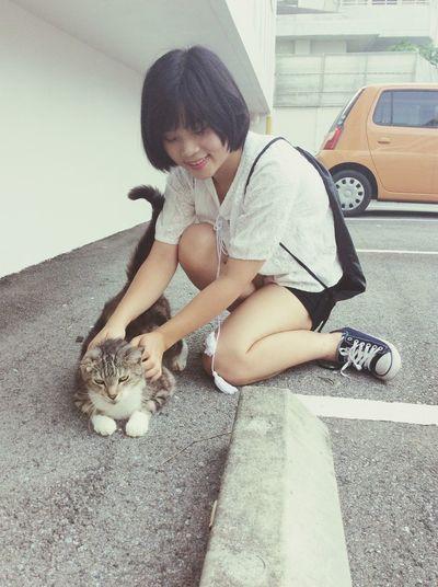 Lazy Fatcat