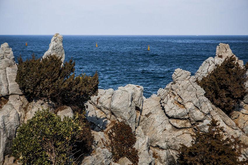 Cheuam Beach Chotdaebawi Neungpadae Samcheok East Sea South Korea Korea Coast Seaside Winter Sea