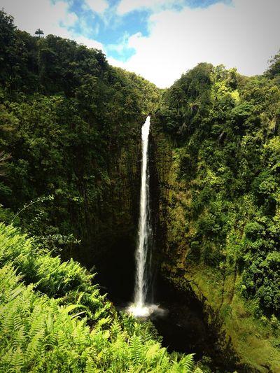 Eyeemphoto 🌱 Waterfall Life