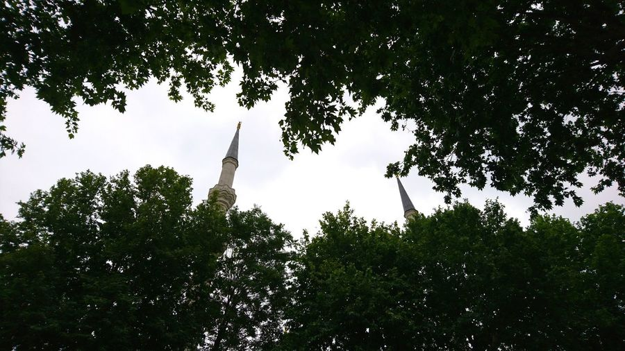 Minarets. · Istanbul Turkey Eurasia Minarets Minaret Mosque Framed By Trees Leaves Green Urban Landscape Up Low Angle View Simplicity Minimalism