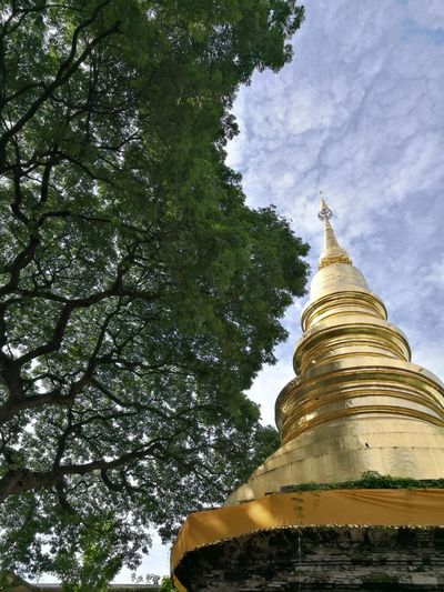 Tree Gold Statue Beauty Place Of Worship Gold Colored Spirituality Religion Pagoda Sky