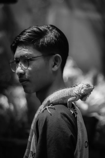 Side view of man with chameleon on shoulder