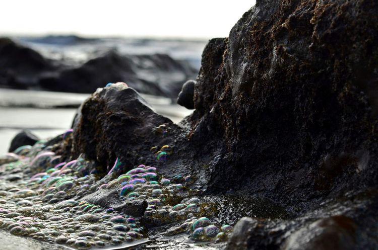 del mar enfurecido se sacan los mejores colores Beach Photography Islascanarias Beach Beautiful Day GranCanaria On The Beach Espuma De Mar Ocean Sea