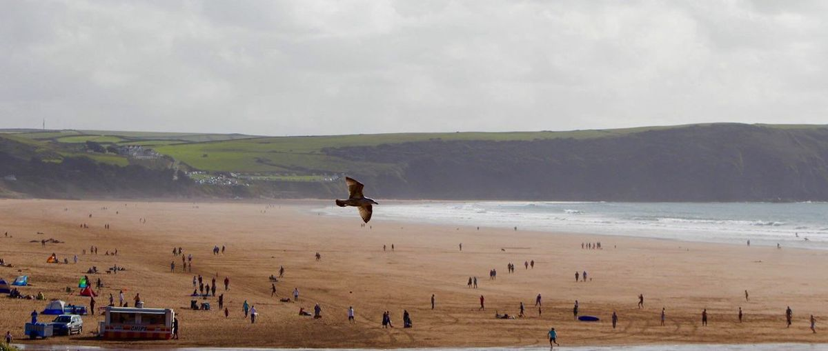 Beach Woolacombe Sand Water Tranquil Scene Shore Scenics Tourism Bird Sea Enjoyment Sky Tranquility Flying Beauty In Ordinary Things