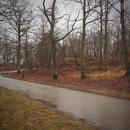 Walking Around Jogging Relaxing Excercising The Places I've Been Today Stockholm