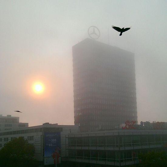 Sun Skyscraper Sky Europacenter Fog No People City Day Outdoors Urban Skyline Bird Flying