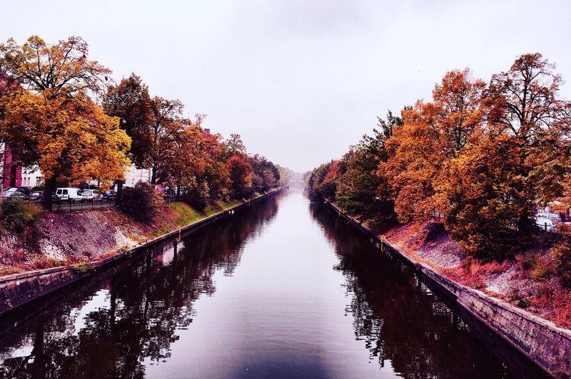 Canal amidst autumn trees against clear sky