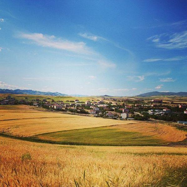 Arguvan Malatya Turkey Travel Landscape Landscape_lovers Landscapes Farm Farmlife Arpa Tarla