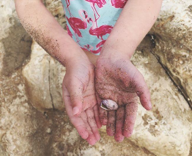 Found Shell Hands Child Sand Sandy Beach Swimsuit Flamingos Natural Bridges State Beach Santa Cruz California United States IPhoneography