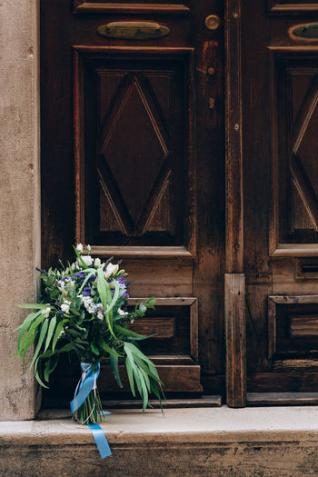 Potted plant on wooden door of building