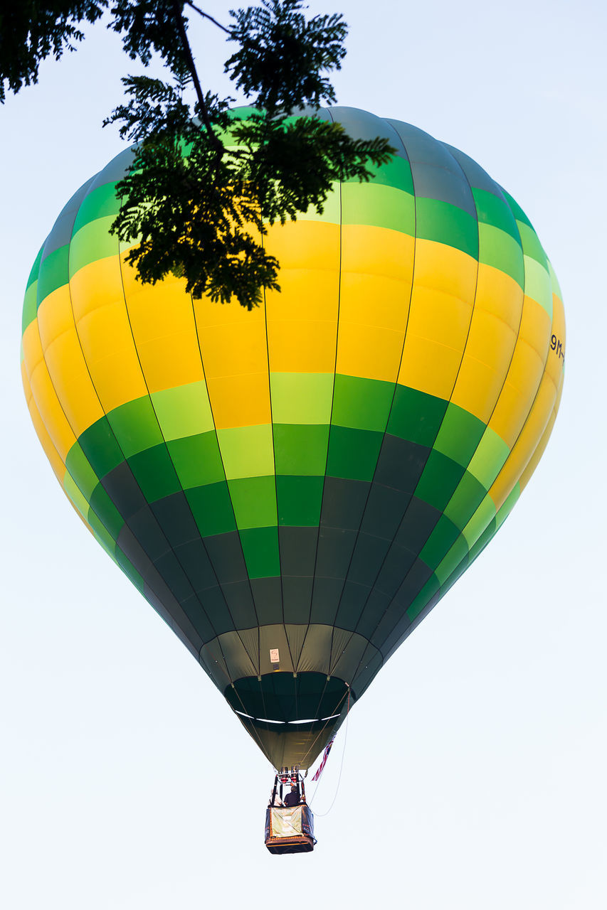 hot air balloon, balloon, sky, air vehicle, multi colored, nature, low angle view, tree, transportation, adventure, extreme sports, yellow, moving up, mode of transportation, leisure activity, mid-air, flying, pattern, outdoors, sport, ballooning festival, excitement