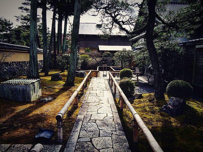 相国寺 養源院 寺社仏閣 Relaxing 京都 Kyoto 京の冬の旅