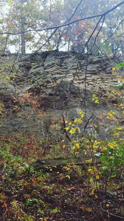 Cliffside Countryside Fall Time Wild In The Hills Pennsylvania state land preserve