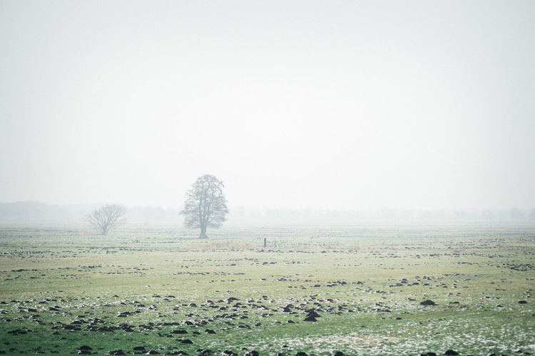 silence Beauty In Nature Cold Temperature Day Fog Nature No People Outdoors Rain Scenics Sky Tranquility Water Weather Wet Winter