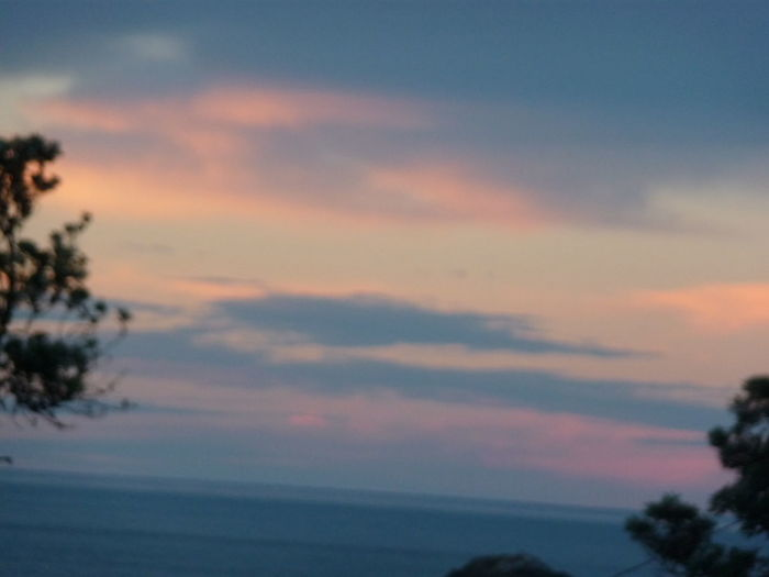 Amazing View Great Atmosphere Great Sunset Great View In Australia Love ♥ Port Macquarie Trees And Sea Wonderful Ske