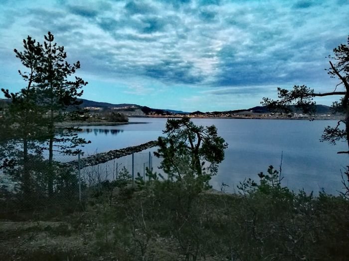 Steinkjer Evening Walk Seascape Treescape Beauty In Nature Outdoors Sky Nature EyeEnNewHere Norway🇳🇴