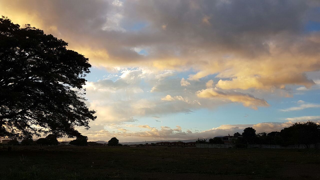 cloud - sky, sky, sunset, nature, tree, beauty in nature, landscape, tranquil scene, scenics, tranquility, no people, silhouette, outdoors, day