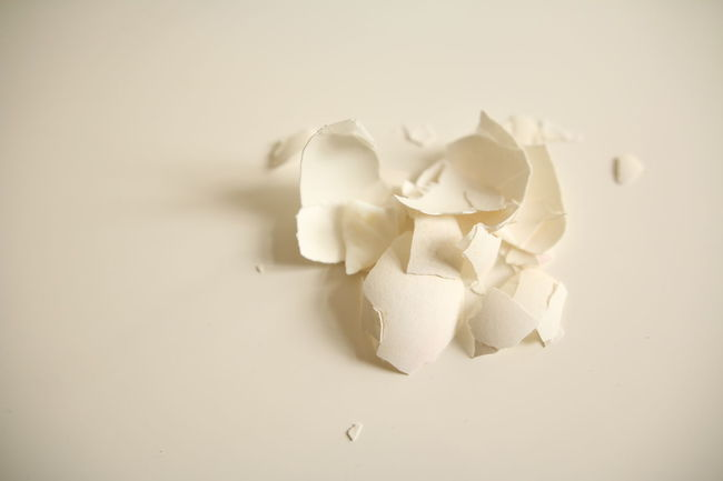 Eating Egg Focus On Foreground Fragility Freshness Nature No People Peel Petal Rind Shell Softness Trash White White Color White Table