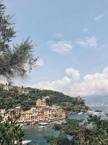 I dreamt walking up to a view like this. Portofino Italy Tranquility JetSet Getaway  Vacations Town On A Hill Beach Town Sky Cloud - Sky Tree Architecture Plant Built Structure Nature Water Sea