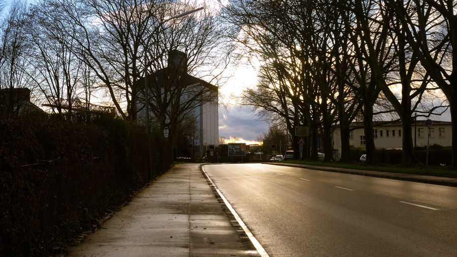 Empty road amidst bare trees and buildings against sky