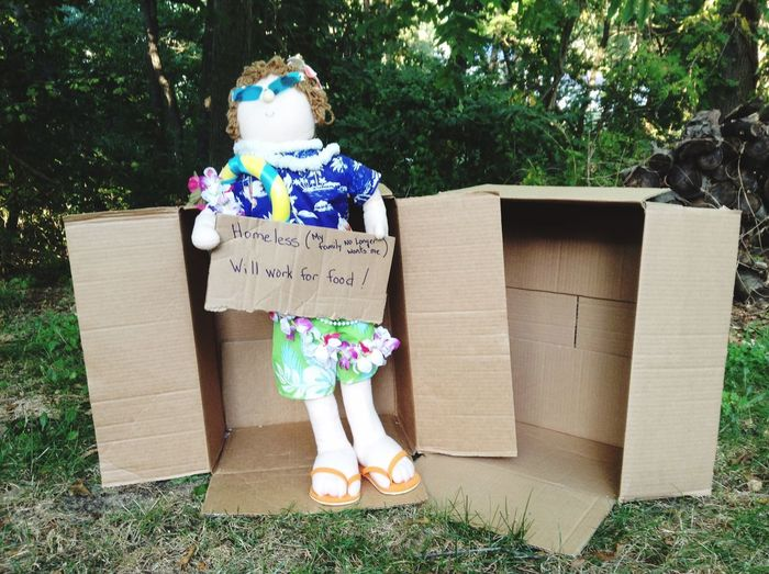 Cardboard Box Text Box - Container Tree Day Outdoors No People Grass Growth Nature Doll Homeless Funny