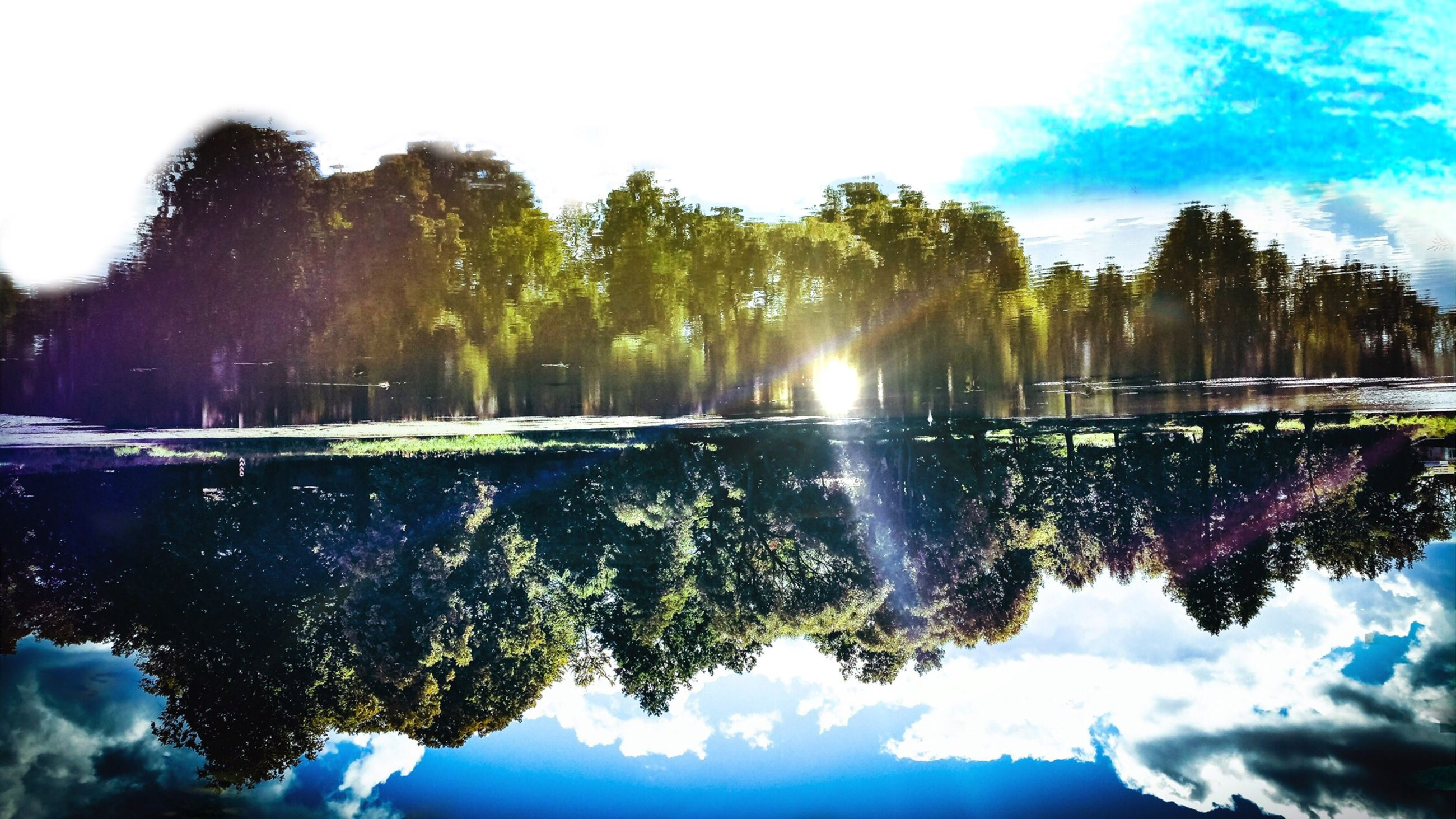reflection, tree, water, nature, sky, scenics, lake, no people, outdoors, beauty in nature, day
