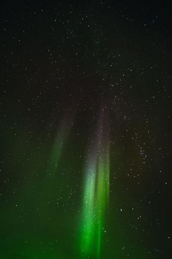 The lights of the North Aurora Borealis Green Color Lights Alaska Astronomy Beauty In Nature Cold Green Color Low Angle View Nature Night Night Sky Outdoors Star - Space Tranquility