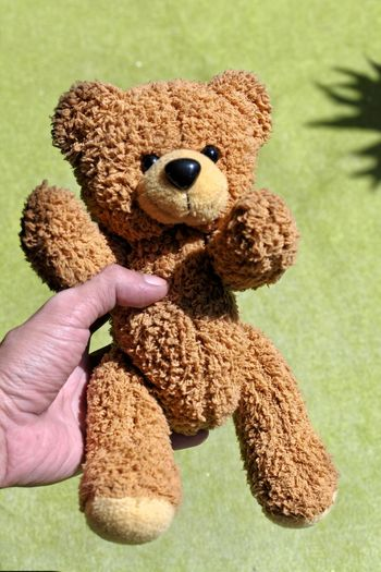 Bean one ??? Bandung Shooter Indonesian Shooter Toy Teddy Bear Stuffed Toy Human Hand Hand Human Body Part One Person Holding Childhood Indoors  Close-up Representation Brown Unrecognizable Person Finger Focus On Foreground Body Part Softness Human Limb