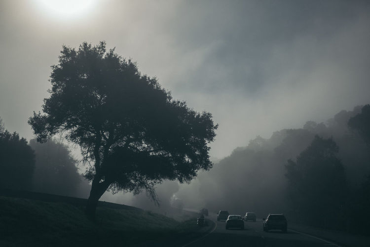 Beauty In Nature Car Day Fog Land Vehicle Landscape Mountain Nature No People Outdoors Scenics Sky Tranquil Scene Tranquility Transportation Tree Weather Break The Mold EyeEmNewHere Neighborhood Map