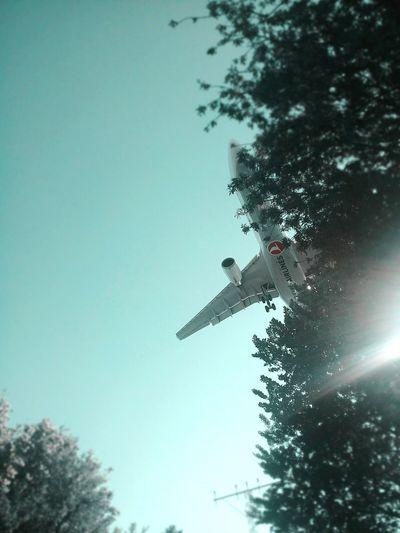 Uçak✈ Air VehicleAir Plane Fly Doğa Uçaklar Turkishairlines Ucak Aircraft Exceptional Photographs