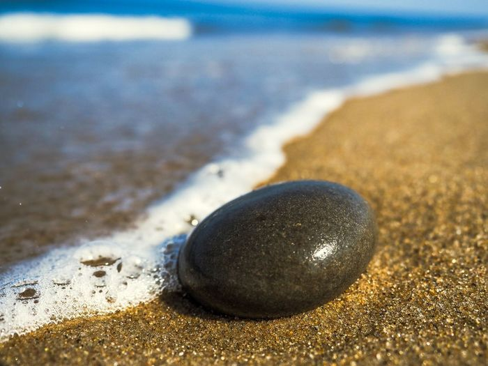 Pebble at the beach in Denmark Shoreline Shore Ocean Denmark Northsea Pebble Pebbles On A Beach Pebbles And Stones Pebble Beach Beach Land Sand Water Close-up Sea Nature Focus On Foreground No People Wet Day Selective Focus Sunlight High Angle View Outdoors Shiny