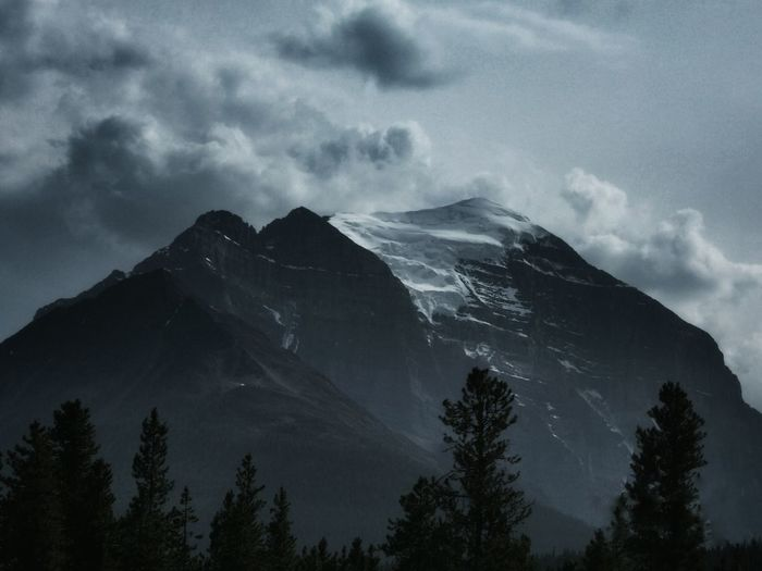 one more glacier picture...maybe...we have lots of them here lol and theyre pretty cool Atmospheric Nature Beauty In Nature Canadian Rockies  Cloudy EyeEm Nature Lover Focus On Background Mountain Addict Glacier Majestic Mountain Nature Non-urban Scene Snow Snowcapped Mountain Stormy Sky Tree