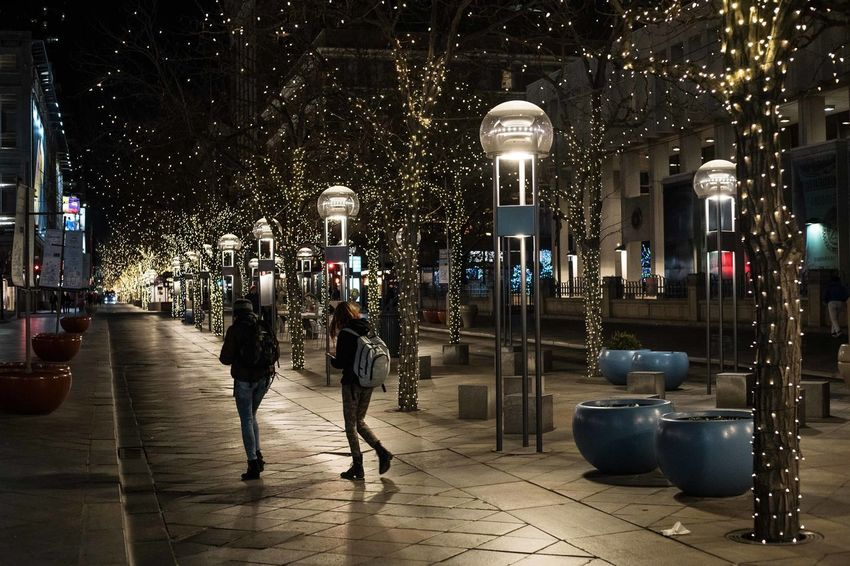 Illuminated Night Architecture Built Structure Denver Holidays Christmas