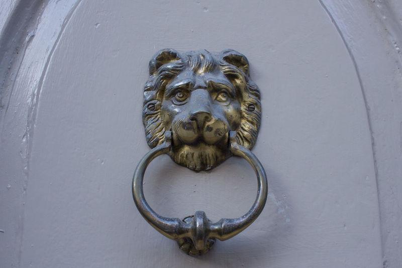 Representation Lion - Feline Creativity Art And Craft Door Feline Animal Wildlife Door Knocker Entrance Metal Day Mammal Close-up No People Craft Outdoors