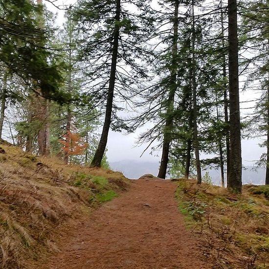 Pre Workout Run along LakeCoeurdalene inbetween rain showers Northwest Trailrunning Running MakeItHappen Enjoythelittlethings