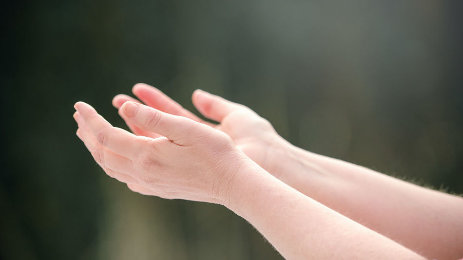 Human Hand Sunlight Humbleness Outdoors Hands Sun Sunshine Hands Up Adult Human Praying Prayer Prayers Reaching Out Reach For The Sky Reaching For The Sky Reach Out Reaching For The Sun Nature Sunny Day Sunny Day☀ Sun ☀