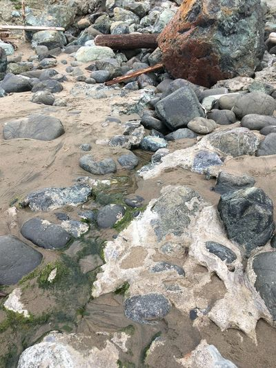 Water finds its way California San Francisco Baker Beach Solid Rock Day Rock - Object Nature High Angle View No People Land Outdoors Water Beach Stone Pebble Geology Textured  Tranquility Beauty In Nature Backgrounds