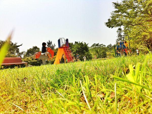 さて。東京に帰ります。渋滞どれくらいかなー(^^;; Kids Hanging Out Green Planting