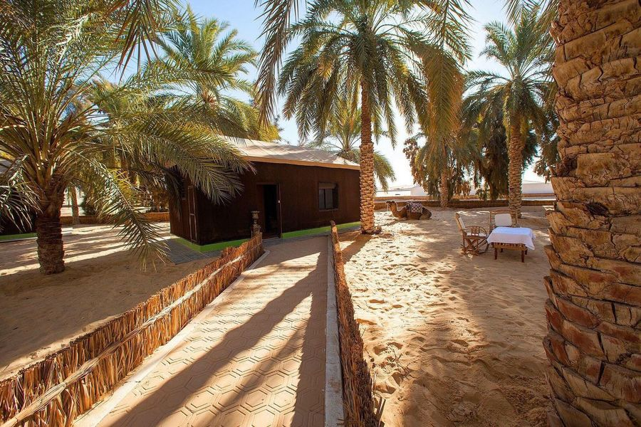 Hotel la Gazelle D'or Oued Souf-Algerie Palm Tree Tree Built Structure Architecture House Sand Building Exterior Beach Day Outdoors No People Sky Nature Sahara Desert Vacations Sahara Of Algeria Oued Souf Gazelle D'or Sahara Algeria EyeEm Algeria Photography Algérie Hotel Architecture