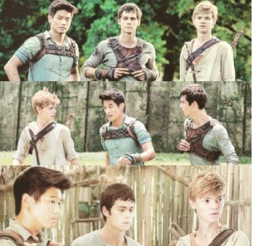 They're so cute when they're in same place. Maze Runner