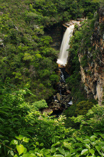 Beauty In Nature Chapada Diamantina Flowing Water Forest Fuji Velvia 100 Green Color Idyllic Lush Foliage Nature Non-urban Scene Plant Scenics The Great Outdoors With Adobe Tranquil Scene Tranquility Tree Waterfalls Watterfall The Great Outdoors - 2017 EyeEm Awards