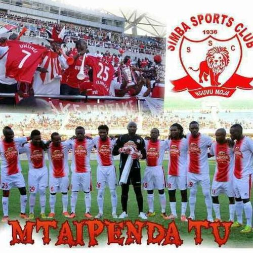My Best Photo 2014 Simba Sc