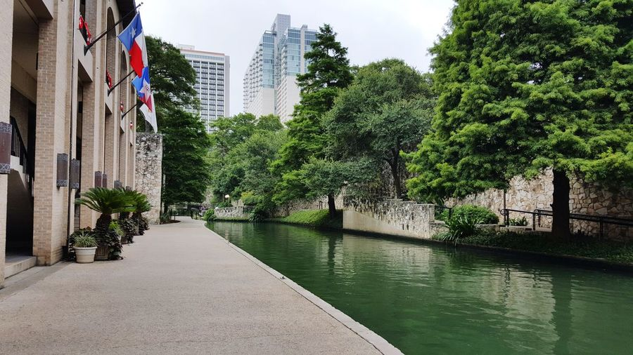 Trees and buildings by canal in city